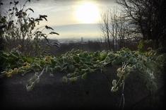 Glasgow from the Necropolis