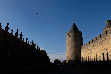 carcassonne-232-copys
